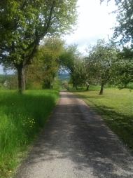 Spaziergang in und um Ersingen